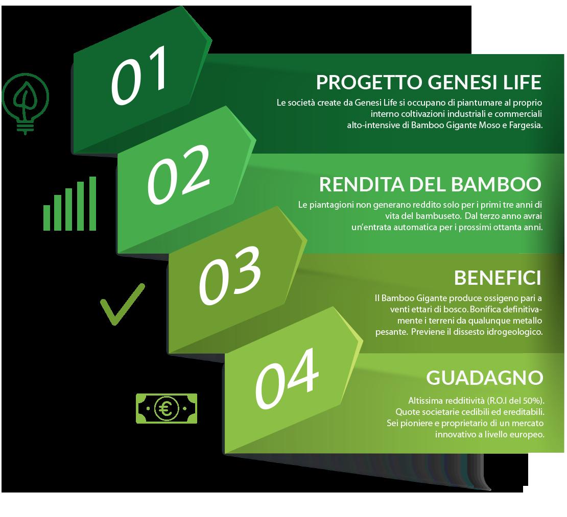 dati-genesi-life-bamboo
