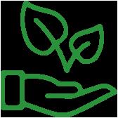 progetto-ecosostenibile-genesi-life-bamboo