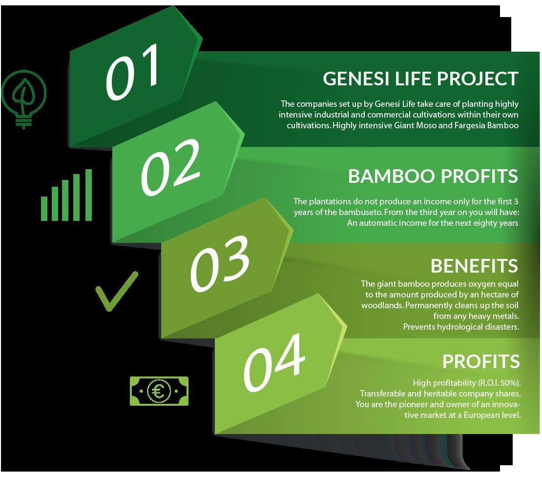 dati-genesi-life-bamboo-eng