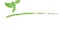 logo-genesi-life-big