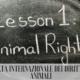 10 Dicembre: Giornata Internazionale dei Diritti degli Animali