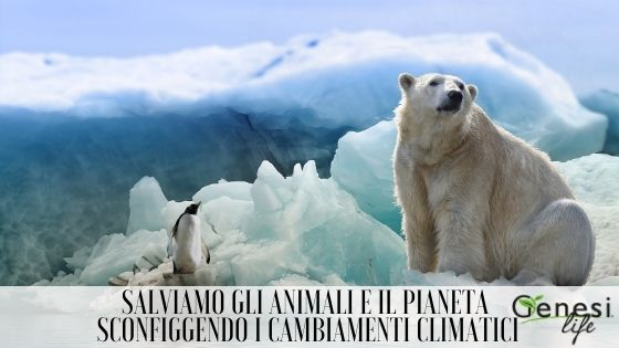 Salviamo gli animali e il Pianeta sconfiggendo i cambiamenti climatici