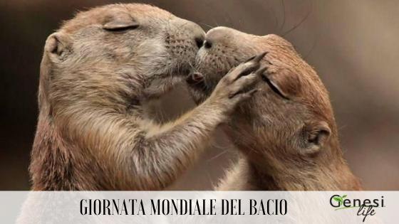 Oggi è la Giornata Mondiale del Bacio: vi raccontiamo quelli nel mondo animale