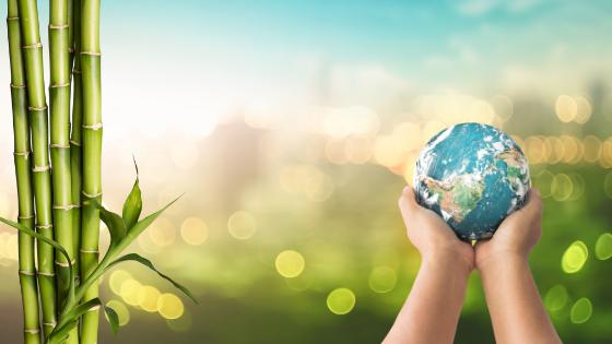 Per la Giornata Mondiale dell'Alimentazione parola d'ordine sostenibilità!